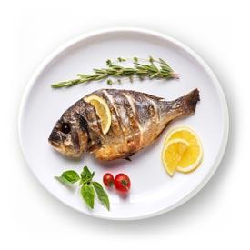 Fisch & Fischgerichte italienisch und kroatisch - Restaurant in Würzburg